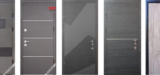 Правильно подобранные дверные системы на сегодняшний день являются одной из главных составляющих в оформлении интерьера. Они помогают создать в быту атмосферу комфорта и безопасности.